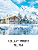 D-794 Snow Scenery Daily Calendar 2017