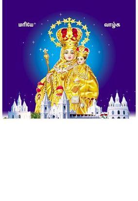 P-1086 Annai Vellankanni matha Daily Calendar 2019