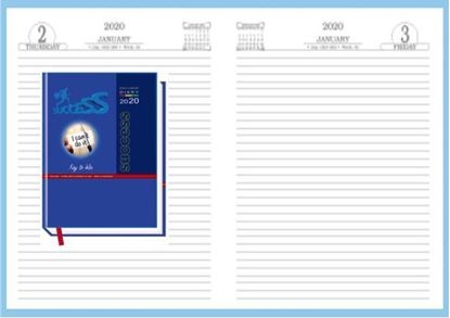 P3626 Diary 2020