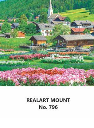 R796 Scenery Daily Calendar Printing 2022