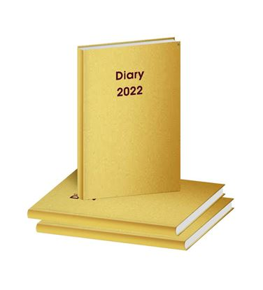D3054 Golden Leather Diary print 2022